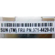Серверная память SUN (FRU PN 371-4429-01) 4096Mb (4Gb) DDR3 ECC в Электростали, память для сервера SUN FRU P/N 371-4429-01 (Электросталь)