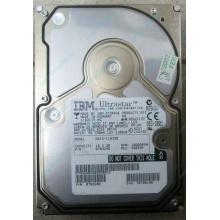 Жесткий диск 18.2Gb IBM Ultrastar DDYS-T18350 Ultra3 SCSI (Электросталь)